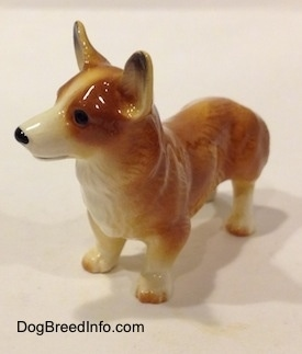 The front left side of a brown with white Pembroke Welsh Corgi figurine. The figurine has brown nails at the top of its white paws.