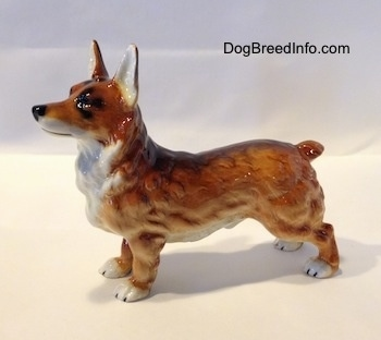 The left side of a porcelain figurine that is of a brown with white and black Pembroke Welsh Corgi. The figurine has very detail hair. Its legs are short and it has a long body and perk ears that stand up. It has a very short nub for a tail.