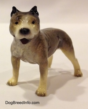A black, grey and white figurine of a Pit Bull Terrier. The figurine has its mouth open and its ears are clipped.