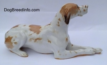 The right side of a porcelain white with brown Pointer in a lying pose figurine. The figurine has brown spots all over its body.