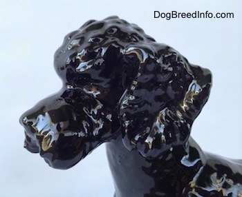 Close up - The head of a black Poodle figurine that has brown eyes.