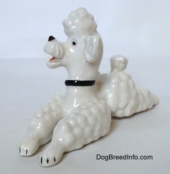 The front left side of a white Poodle figurine in a lying pose. The figurine has black tipped nails.