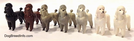 A line-up of seven different color variations of a Poodle standing figurine.