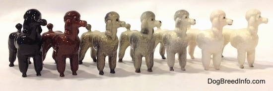 The front right side of a line-up of seven different color variations of a Poodle standing figurine. All of the figurines are looking up and to the right.