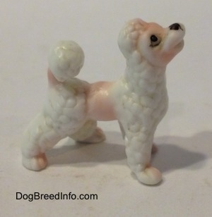The right side of a white bone china Poodle puppy figurine. the figurine is looking up.