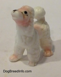 The front left side of a bone china Poodle puppy figurine. The figurine has black circles for eyes and a nose.