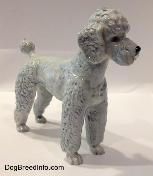 The front right side of a porcelain white with blue Poodle figurine standing. The figurine has tiny detailed paws.