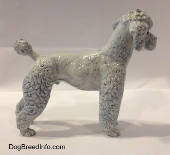 The right side of a white with blue porcelain Poodle figurine. The figurine has average length legs.