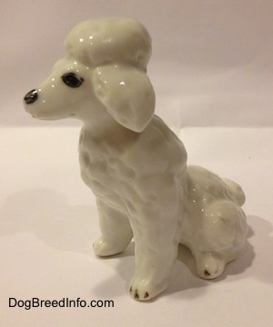 The front left side of a Poodle figurine made out of bone china and it is in a seated position. The figurine has black circles for eyes and a black circle for a nose.