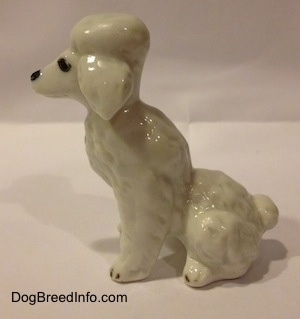The left side of a white bone china Poodle figuinre in a seated position. The figurine has a poofy ear.