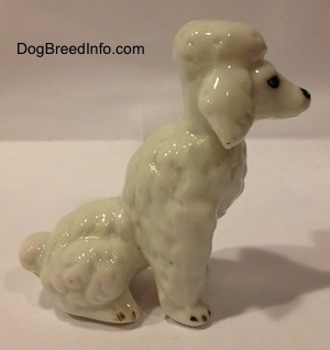 The right side of a bone china Poodle figurine in a sitting position. The figurine has a hair poof on its head.