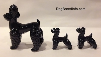 The left side of three black Poodle figurines. There are two puppies and an adult. The figurines tails are short and arched in the air.