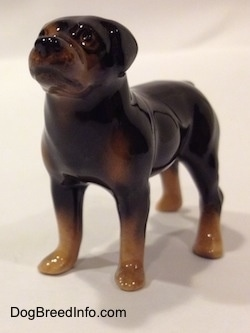 A figurine of a brown with black miniature Rottweiler. The figurine has medium length legs.