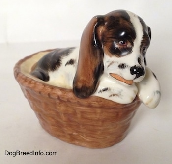 The front right side of a white with brown and black Russian Spaniel puppy in a basket figurine. The figurine is painted to look like it is licking its paw.