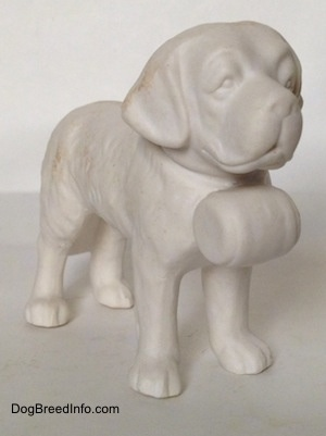The front right side of a white bisque porcelain Saint Bernard figurine. The figurine is not painted.