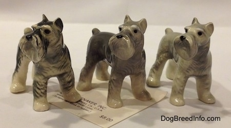 Three color variations of a Miniature Schnauzer figurine. They all have black circles for eyes.