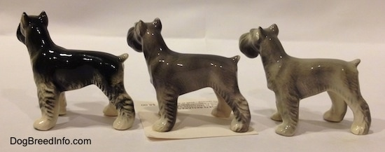 The left side of three color variations of a Miniature Schnauzer figurine. The figurines have short tails arched in the air.