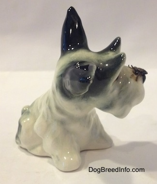 The front right side of a white with black figurine of a miniature Schnauzer in a sitting position.