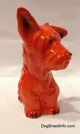 An orange miniature Schnauzer sitting figurine. The figurine has black tipped nails.