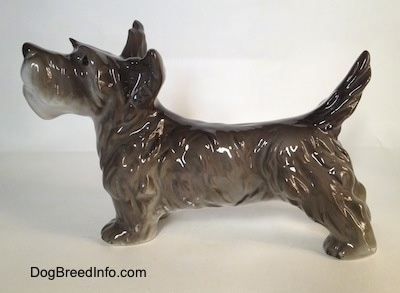 The left side of a black, grey and white Schnauzer figurine in a standing pose. The figurine is glossy.