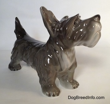 The front right side of a figurine of a black, grey and white miniature Schnauzer that is in a standing pose. The chest of the figurine is white.