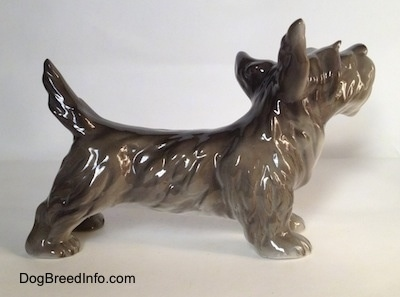 The right side of a figurine of a black, grey and white Schnauzer in a standing pose. The figurine has its long tail arched in the air.