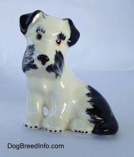 The left side of a ceramic parti-color Miniature Schnauzer figurine in a sitting position. The figurines head is tilted and it has black circles for eyes.