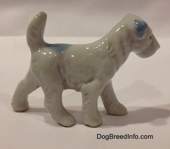 The right side of a bone china white with blue figurine of a Miniature Schnauzer figurine. The ears of the figurine are blue.
