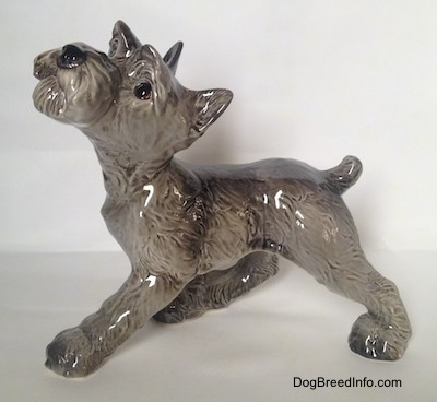 The left side of a grey with white Schnauzer puppy figurine. The figurine has a detailed face.