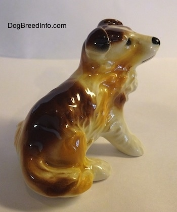 The back right side of a white with brown porcelain figurine of a Scotch Collie dog sitting. The figurine has small flopped over ears.