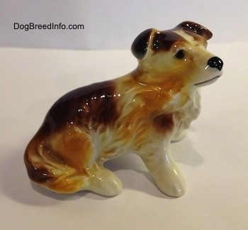 The right side of a porcelain white with brown Scotch Collie dog sitting figurine. The figurine has its tail attached to the side of its leg.