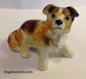 The front right side of a figurine of a porcelain white with brown Scotch Collie sitting. The figurine ha sfine hair details along its body.