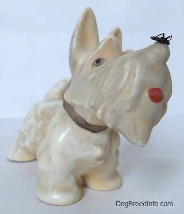 The front right side of a figurine of a white and cream Scottish Terrier with a fly on its nose. The figurines mouth is painted open.