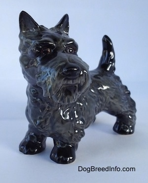 The front left side of a black Scottish Terrier figurine. The figurine has alert ears and it is looking to the right.