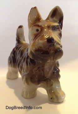 The frotn of a brown with white figurine of a bone china Scottish Terrier. The figurien has black circles for eyes and a nose.