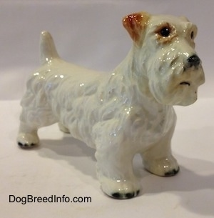 The front right side of a figurine of a white with brown Sealyham Terrier. The figurine has short legs and black tipped nails.