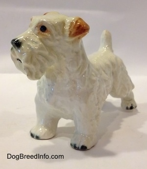 The front left side of a white with brown figurine of a Sealyham Terrier. The figurine has black circles for eyes.