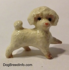 The right side of a white with brown Toy Poodle walking figurine. The figurine has black circles for eyes.