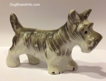 The front right side of a grey and white porcelain miniature Schnauzer figurine. The ears of the figurine are in the air.