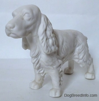 The front left side of a white bisque figurine of a Welsh Springer Spaniel standing. The figurine has long ears.
