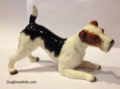 The right side of a white and black with brown porcelain Wire Fox Terrier figurine. The ears of the figurine are flopped over.