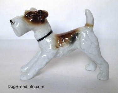The left side of a white with black and brown Wire Fox Terrier figurine. The figurine has a black collar around its neck.