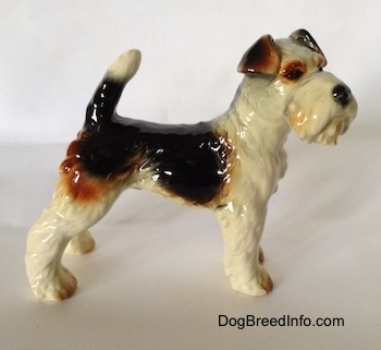 The right side of a black and white with brown porcelain Wire Fox Terrier figurine. The figurine is glossy.