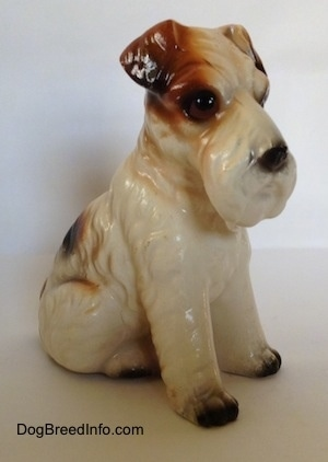 The front right side of a white with black and brown ceramic Wire Fox Terrier sitting figurine. The figurine has black paws.