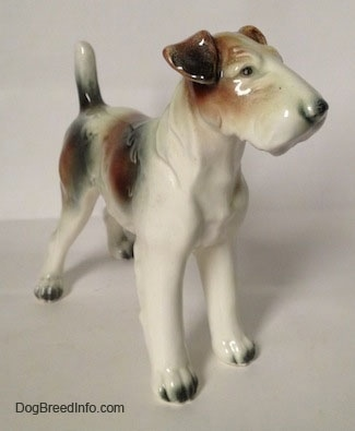 The front right side of a white with brown and black Wire Fox Terrier figurine. The figurine has flopped over ears.