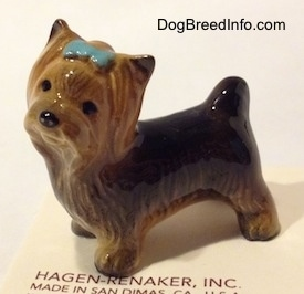 The front left side of a black with brown figurine of a Yorkshire Terrier with a light blue ribbon in its hair.