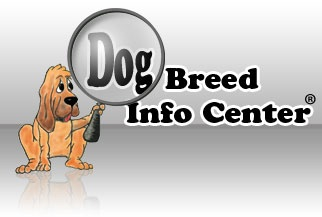 Dog Breed Info Center(R) DBIC